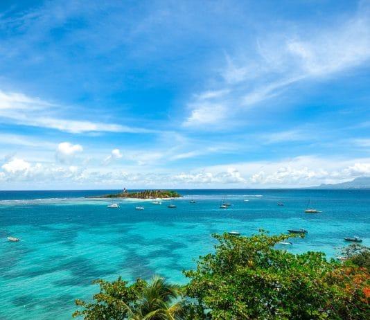 Pourquoi venir en Guadeloupe ?